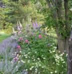 Black Walnut Educational Gardens